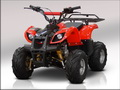 ATV 110 Grizly